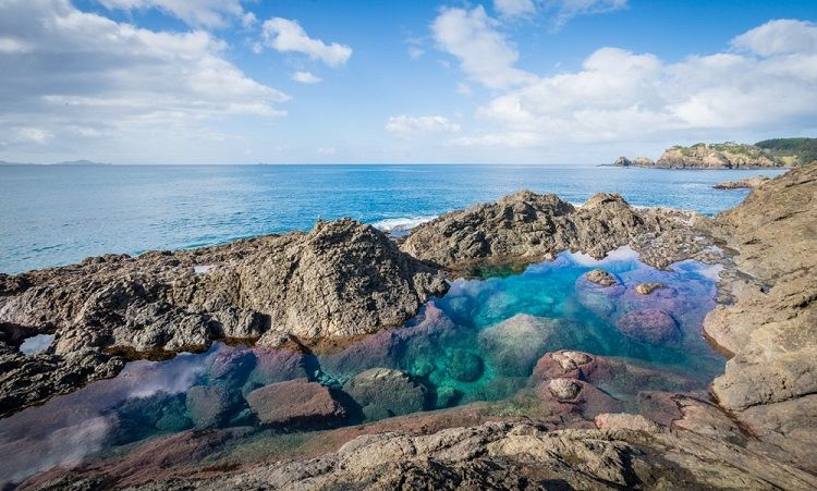 Mermaid pools at matapouri bay new zealand adventure - Mission bay swimming pool auckland ...