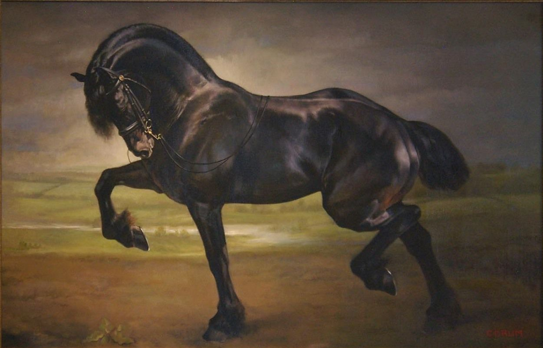 Artist: Jaime Corum Black Sail 28×46 Oil on wood | Art - Animal Art ...