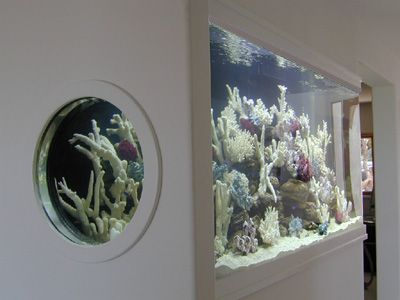 500 gallon l shaped marine fish tank aquarium design marine