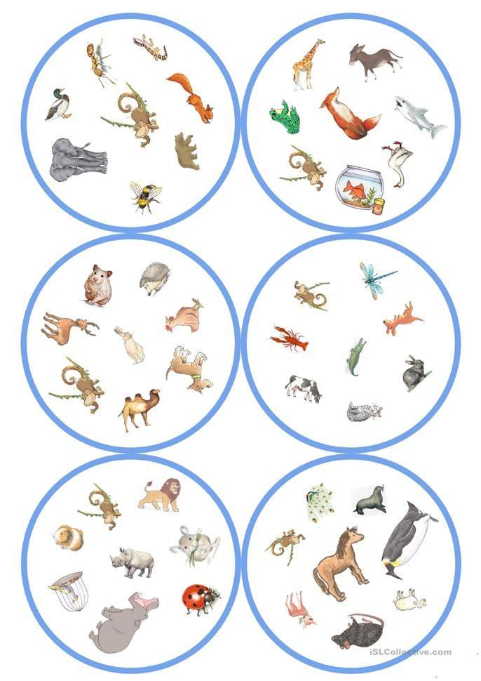 spiele im deutschunterricht dobble tiere 57 karten 8 symbole schule deutsch. Black Bedroom Furniture Sets. Home Design Ideas