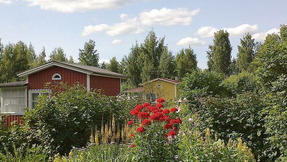 Pihapiiri Kantolanniemen siirtolapuutarhassa Hämeenlinnassa