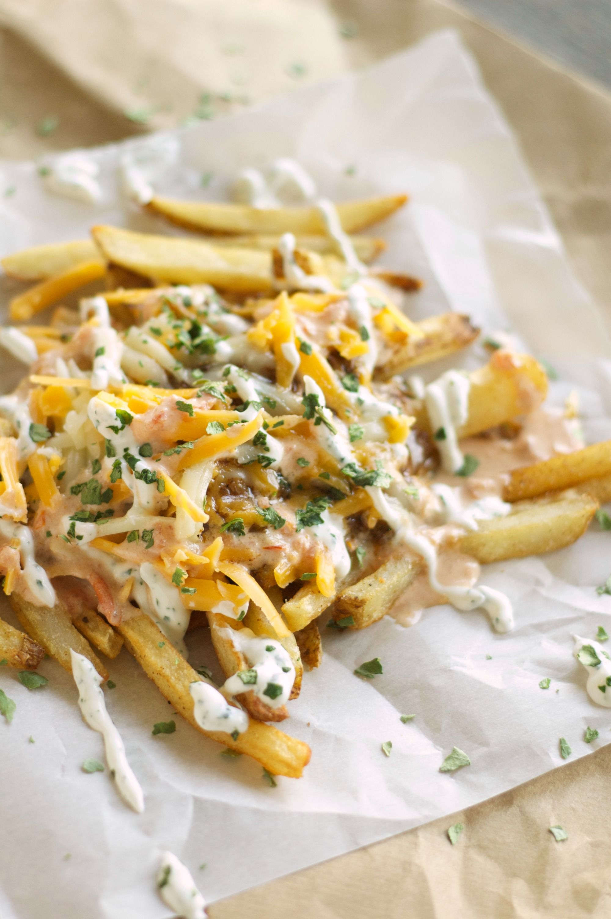 Crockpot brown gravy enchilada chili cheese street fries