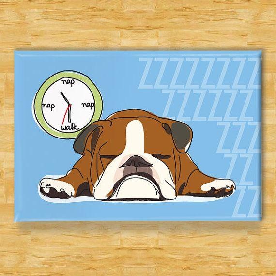 Bulldog Magnet Naps At Walk Time Brown And White Bulldog Gifts
