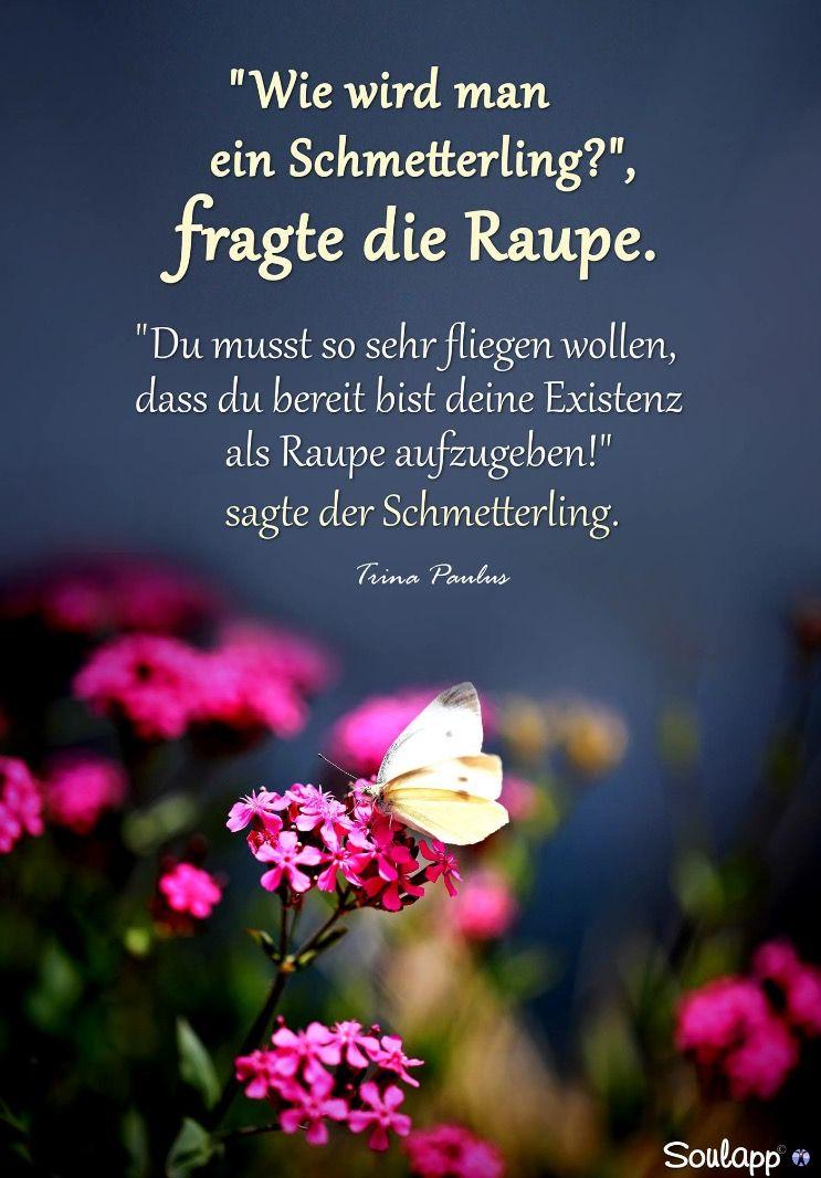 Pin Von Magitta Schrotmann Auf Zitate Quotes Quotations