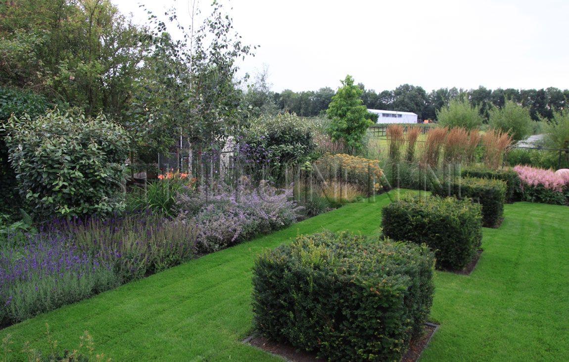 lavendel landelijke tuin google zoeken tuin On tuin lavendel