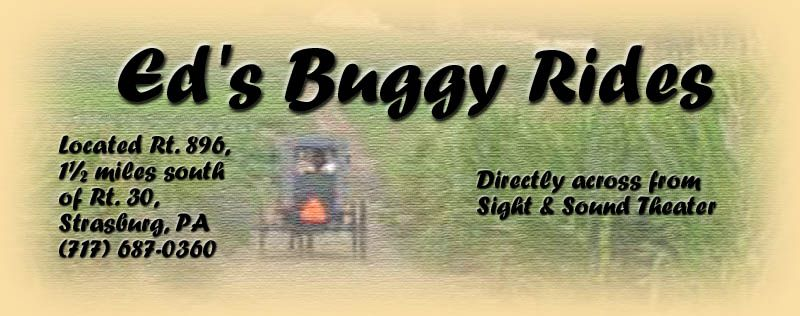 ED's Buggy Rides, Amish Buggy Ride Tours in Strasburg, PA