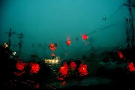 Saul Leiter SMALL TOWN - Google Search