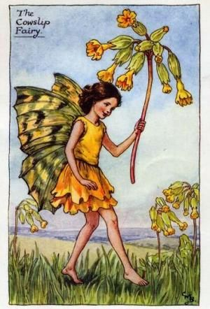 Spring Fairies:  The Cowslip Fairy by Cicely Mary Barker