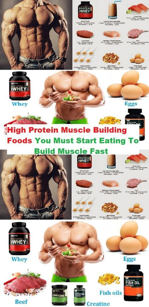 High Protein Muscle Building Foods You Must Start Eating To Build
