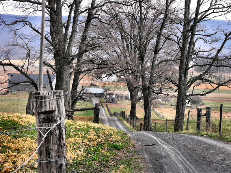 country living, farm lane