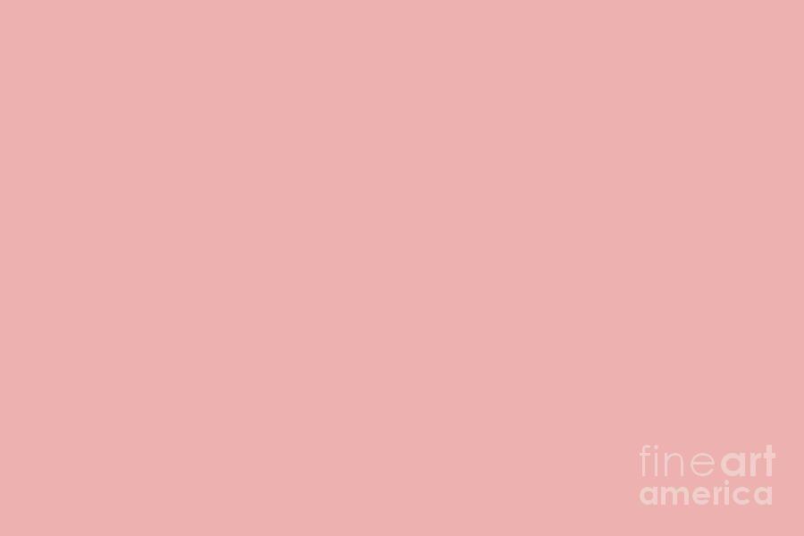 Coral Digital Art Pratt And Lambert 2019 Coral Pink 2 6 Pastel Pink Solid Color By Melissa Fagu In 2020 Pastel Color Background Solid Color Backgrounds Vintage Roses