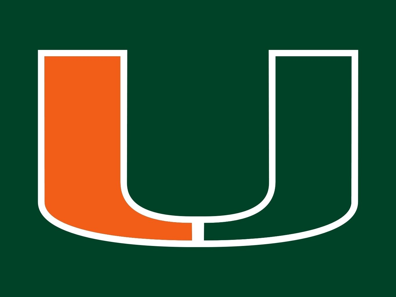 Image result for miami fl hurricanes logo colored background