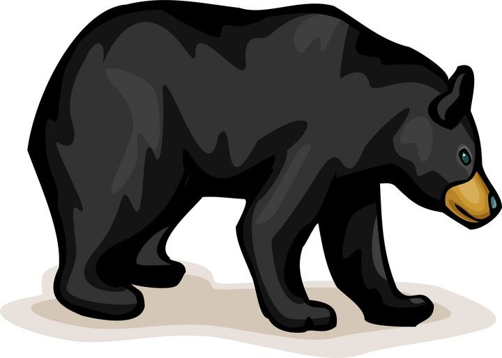 free bear clipart bears pinterest bears clip art and scrap rh pinterest com black and white polar bear clipart black bear clipart free