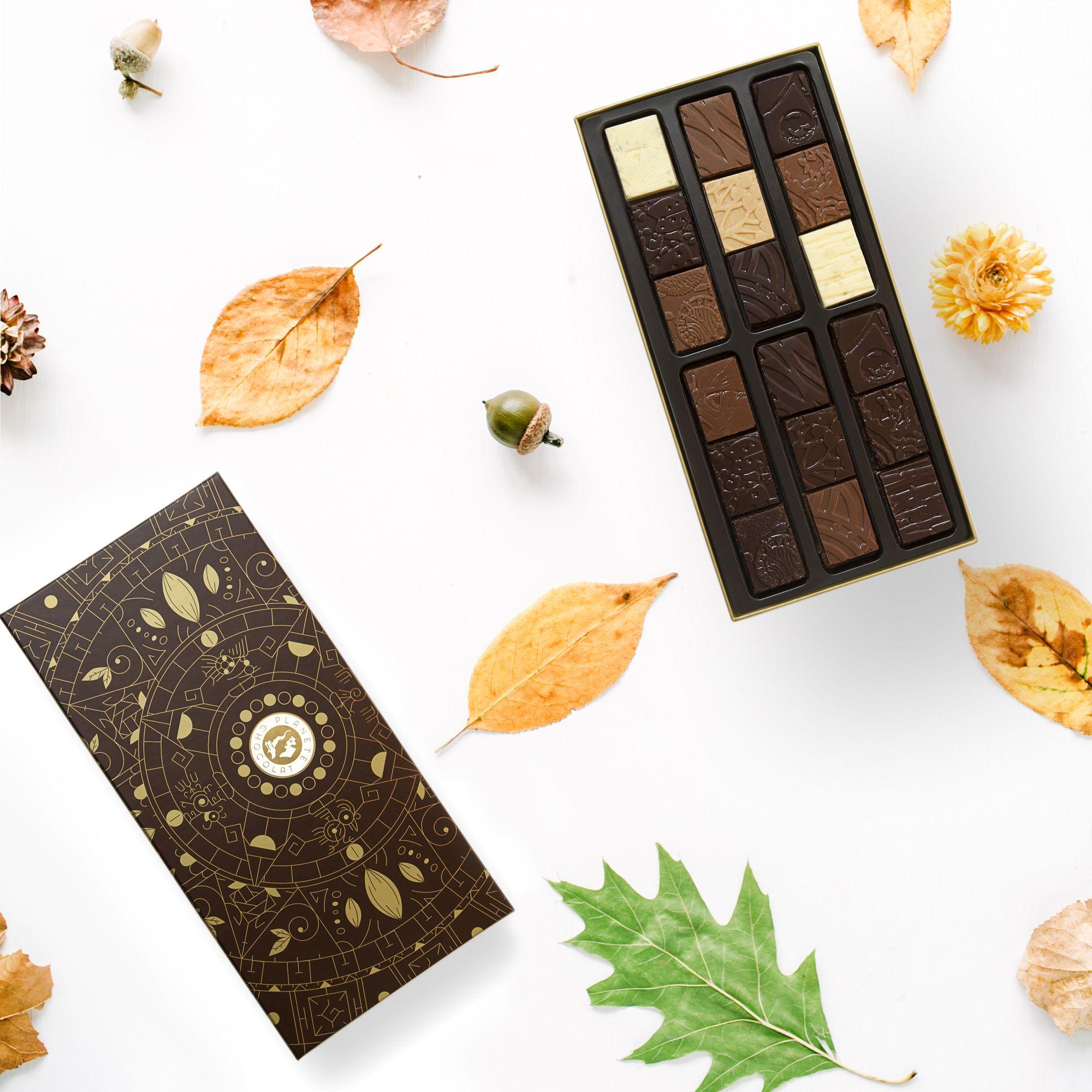 Boite Chocolat Voyage Au Pays Des Saveurs Du Monde 54 Pieces 250gr Chocolat Brut Moka Cafe Feve De Cacao