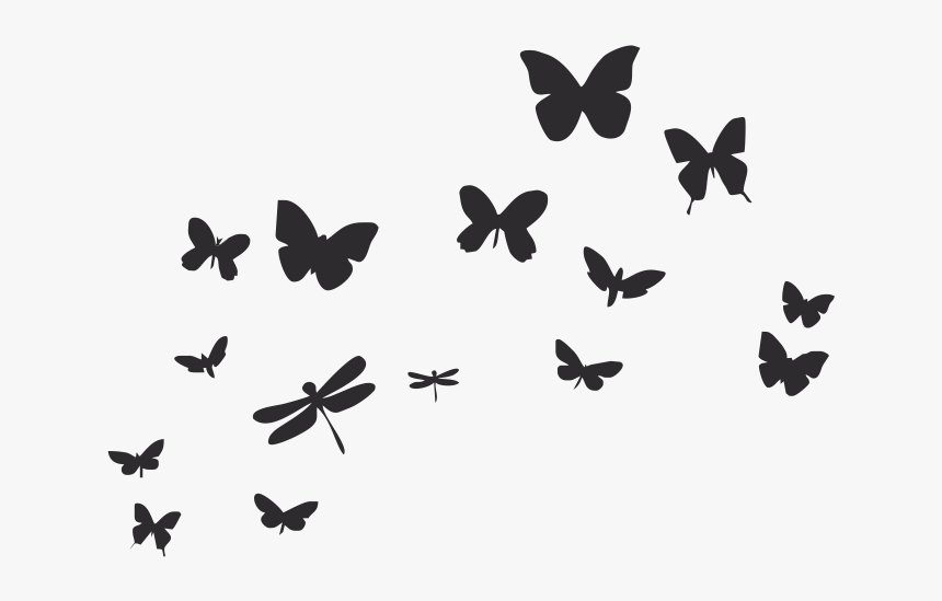 Butterflies Flying Black And White Hd Png Download Is Free Transparent Png Image To Explore More Similar Hd Imag Butterflies Flying Black And White Butterfly