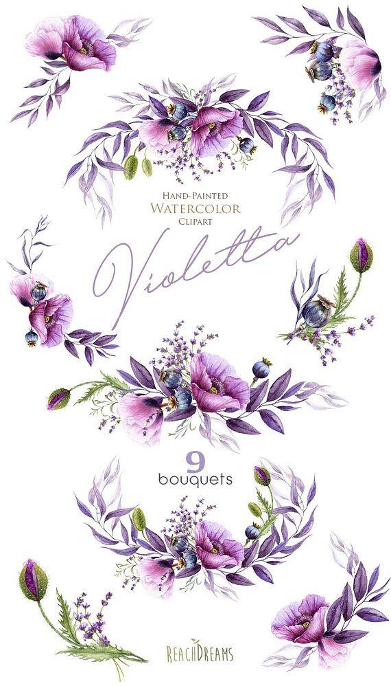 Watercolor Violet Poppy, Lavender, purple flowers ...
