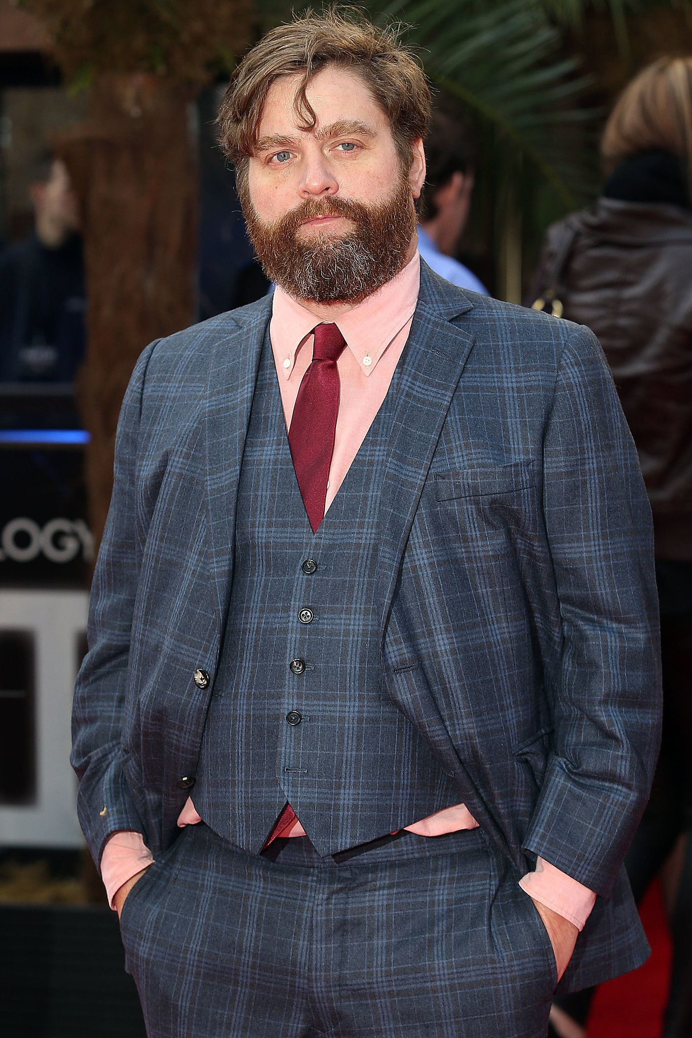 Although Zach Galifianakis Was Recently Married He S Still Prepping His Dad Bod For When They Decide To Have A Baby The Hangover Actor Shows Off