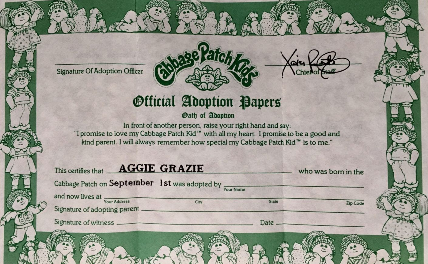 Pin By Rose On Inspirational Cabbage Patch Kids Birth Certificate Template Patch Kids Cabbage patch doll birth certificate template