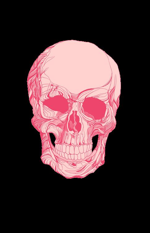 Skulls Tumblr Aesthetic: Cráneos Y Calaveras, Arte