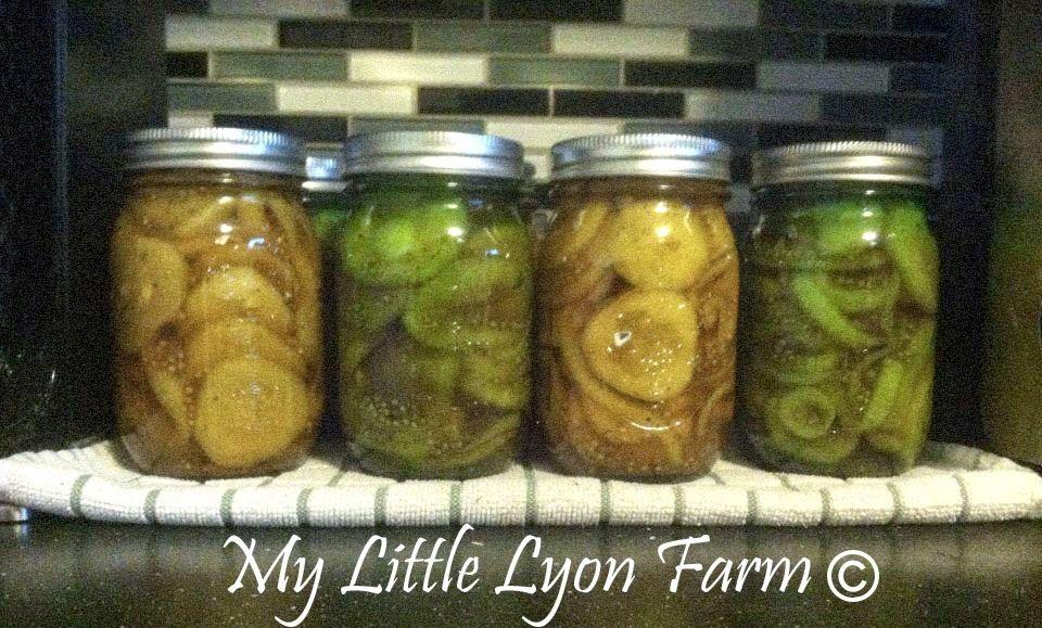 My Little Lyon Farm: Update 7/22/14.... Pickles!! :)