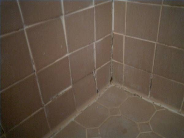 How to remove black mold from bathroom tile getting - How to clean black mold in bathroom ...