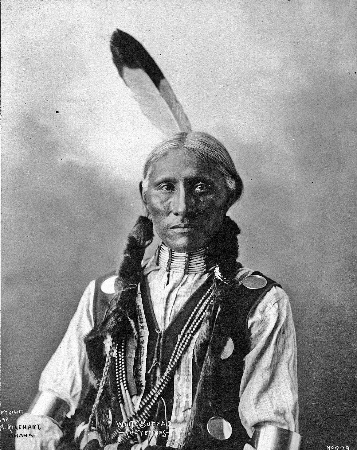 White Buffalo, Cheyenne chief - Photo by Frank A. Rinehart, on the occasion of…