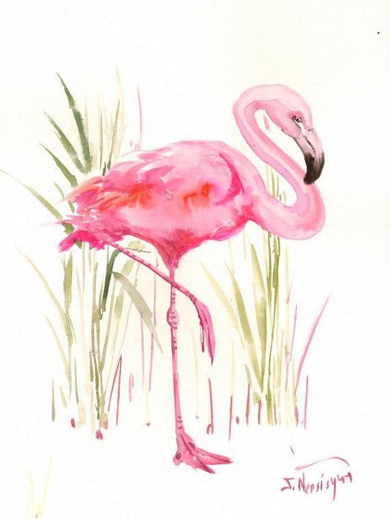 Flamingo Original Watercolor Painting 14 X 11 In By Originalonly