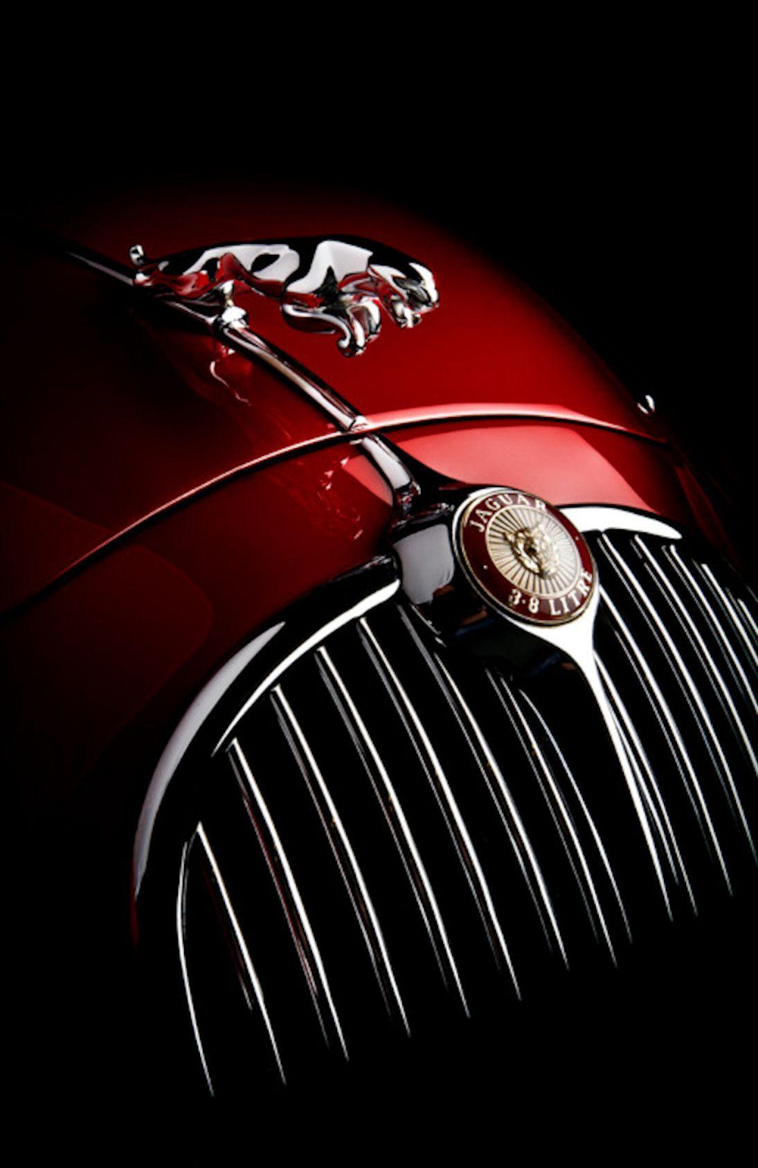 Jaguar Sports cars luxury, Jaguar, Classic cars