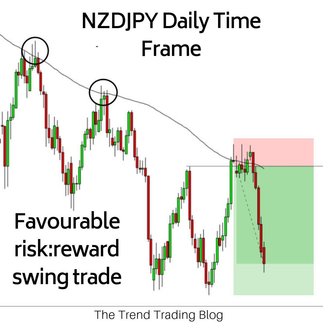 Long term trend trading forex