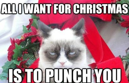 Funny Christmas Cat Memes Free Hd Download For Facebook Whatsapp Pinterest To Greet Frie Grumpy Cat Meme Christmas Grumpy Cat Christmas Christmas Memes Funny