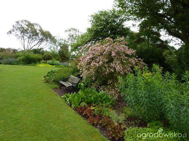 Galeria zdjęć - Ogrody angielskie - The Beth Chatto Gardens - Ogrodowisko
