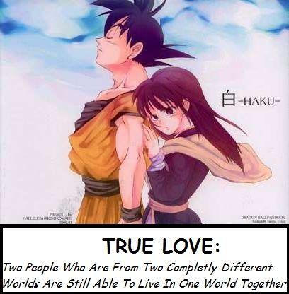 Goku Chichi Quotes