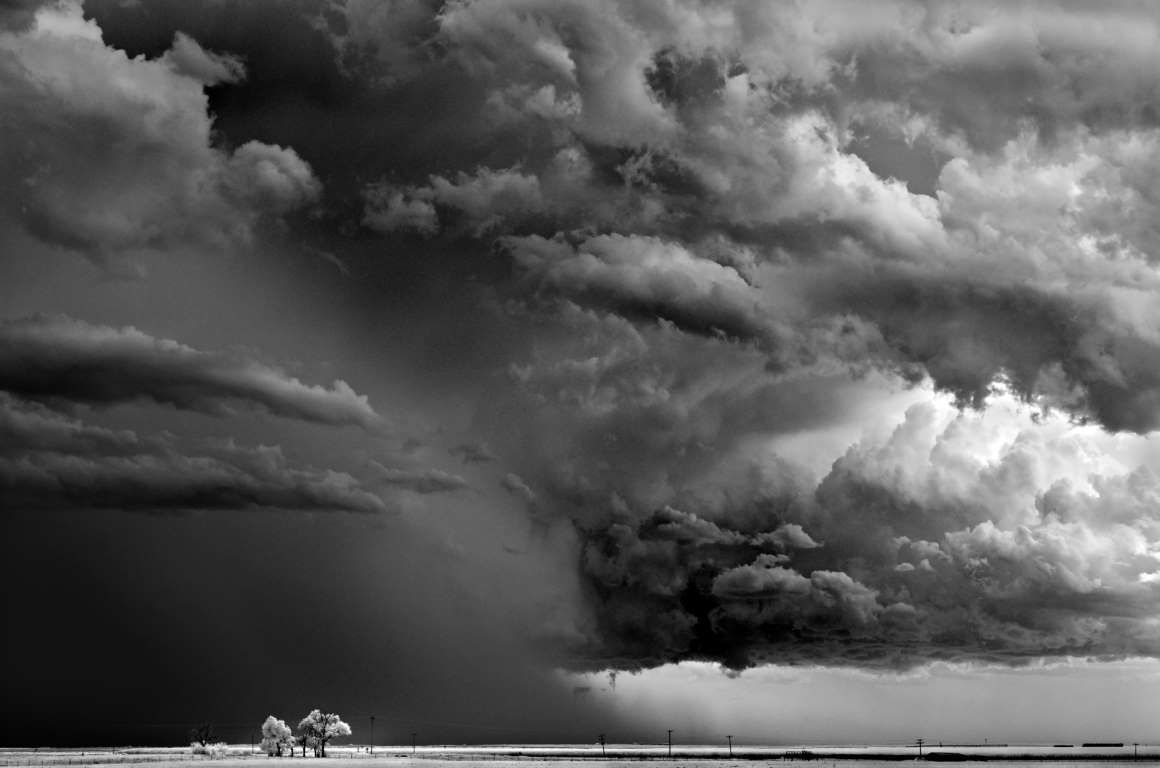 'Trees - Clouds' - Mitch Dobrowner