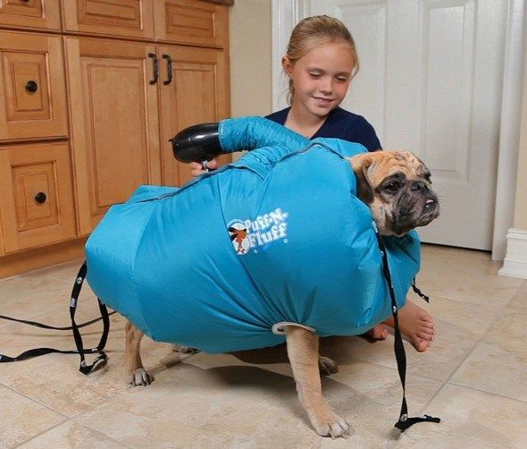 Puff N Fluff Dog Dryer Fluffy Air Dry Your Dog