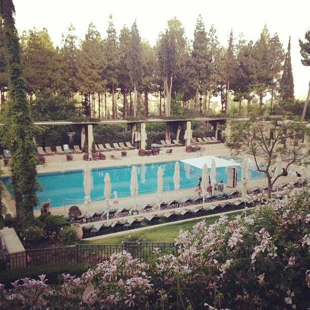 Picture perfect swimming pool at the king david hotel jerusalem king david pinterest king for Hotels in jerusalem with swimming pool