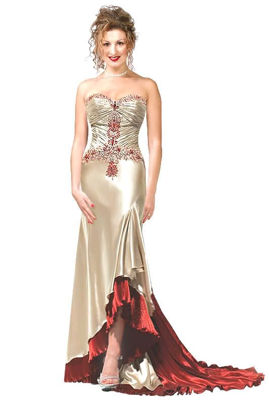 فساتين سهرة طويلة 2014 Dresses Evening Dresses Long 2014 Dresses
