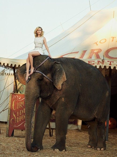 Photoshoot with an elephant model is on my bucket list :)