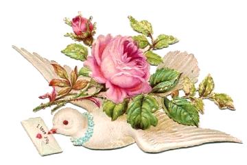 360px × 241px (scaled to 640px × 428px)   Glanzbilder - Victorian Die Cut - Victorian Scrap - Tube Victorienne - Glansbilleder - Plaatjes : Tauben mit Blumen - doves with flowers - colombes floral