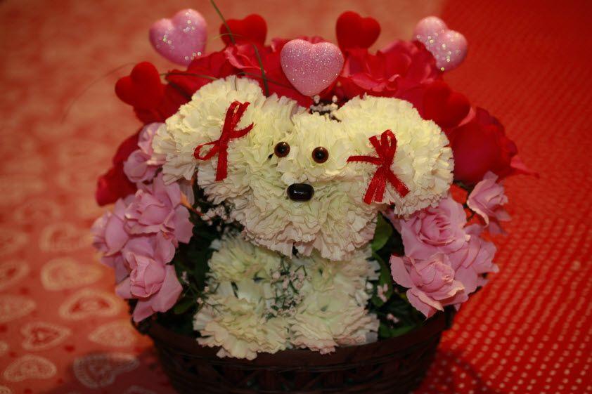cute puppy!   Craft Ideas   Pinterest   Flowers, Flower arrangements ...