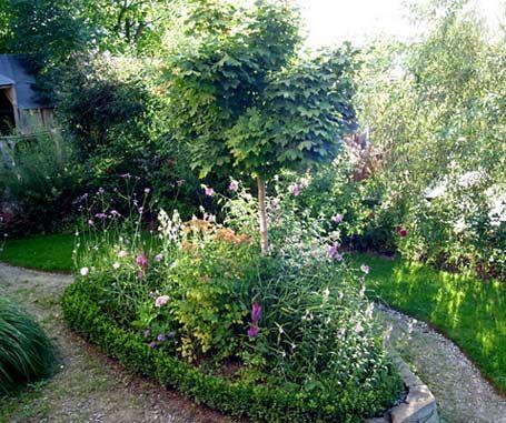 Bildergalerie - Mein schöner Garten | Garten | Schöne gärten, Garten ...