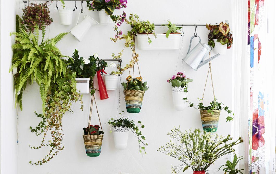Piante Ufficio Ikea : Crea un giardino verticale con vasi sospesi e binari a parete ikea