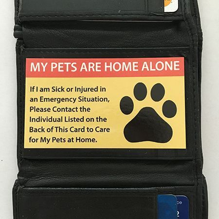 Pet Care Cards for Pets Pet Care Cards for Pets