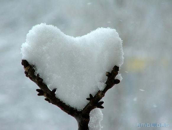 Snow heart.