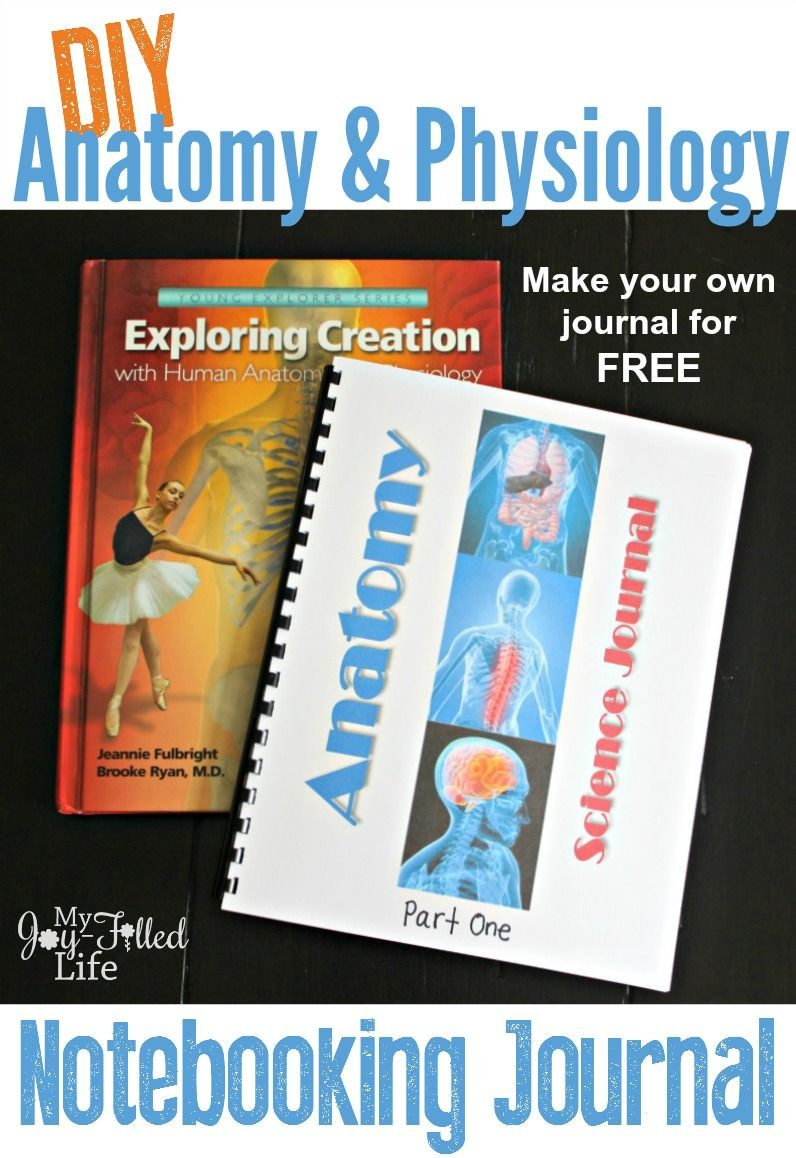 DIY Anatomy & Physiology Notebooking Journal | Anatomy, Journal and ...
