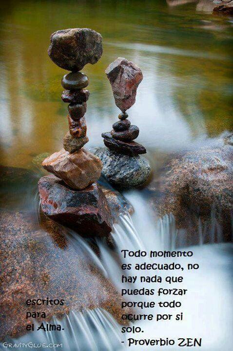Frases Proverbio Zen Frases Del Alma Pensamientos Del