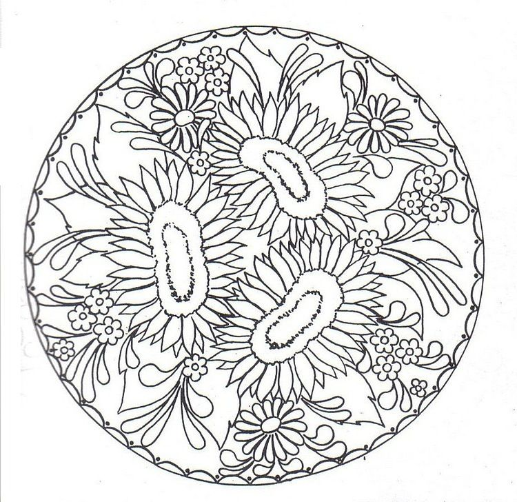 mandala of sunflowers, daisies, and little flowers