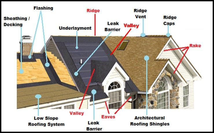 What S The Anatomy Of A Roof Roofing Roof Leak Repair Roof Shingles
