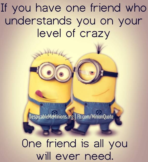 minion quotes | Minion-Quote-If-you-have | words to live ...