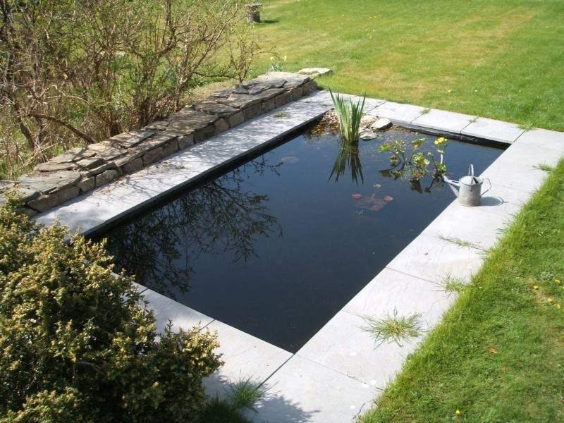 bassin aquatique de jardin etapes de