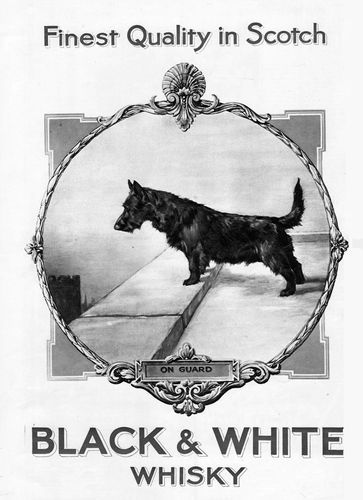 Pin On Vintage Whisky Ads Black White